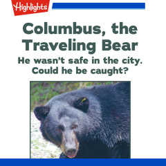 Map for Columbus, the Traveling Bear