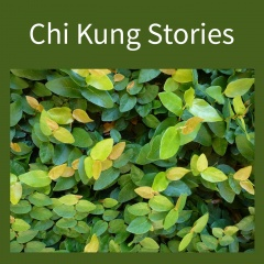 Chi Kung Stories