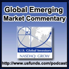 Global Emerging Markets Fund Portfolio Direct Commentary